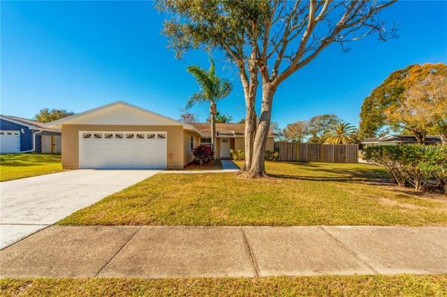329 Oakhill Ct, Palm Harbor, FL 34683 (MLS #U8031192) :: Burwell Real Estate