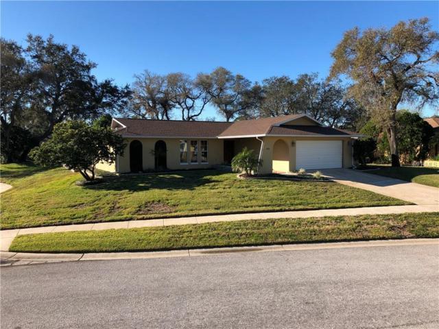 1625 Treasure Drive, Tarpon Springs, FL 34689 (MLS #U8031282) :: Lock & Key Realty
