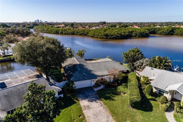 1308 50TH Avenue NE, St Petersburg, FL 33703 (MLS #U8031336) :: Griffin Group