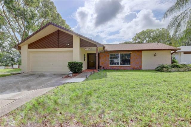 2840 Thistle Court N, Palm Harbor, FL 34684 (MLS #U8031360) :: Paolini Properties Group
