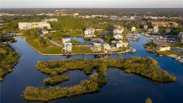 Lot 1 Elisabethan Lane, New Port Richey, FL 34652 (MLS #U8031361) :: The Duncan Duo Team