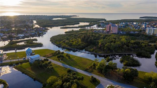 Lot 4 Elisabethan Lane, New Port Richey, FL 34652 (MLS #U8031374) :: EXIT King Realty
