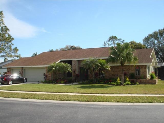 3994 Belmoor Drive, Palm Harbor, FL 34685 (MLS #U8031377) :: Paolini Properties Group
