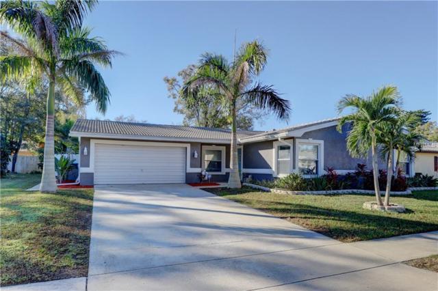 20 Tern Place, Palm Harbor, FL 34683 (MLS #U8031380) :: Lock & Key Realty