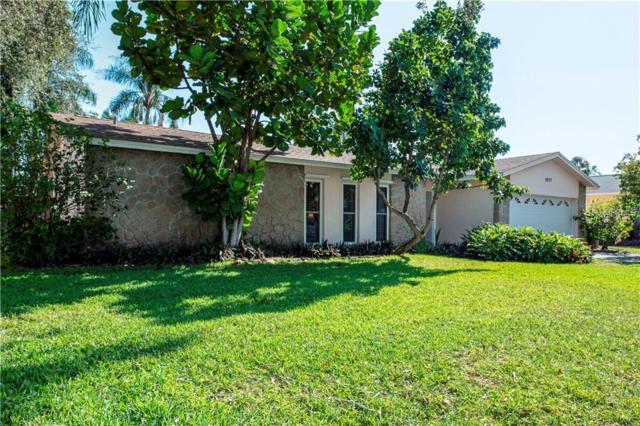 5975 Tanglewood Drive NE, St Petersburg, FL 33703 (MLS #U8031415) :: EXIT King Realty