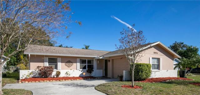 3024 Sarah Drive, Clearwater, FL 33759 (MLS #U8031429) :: Paolini Properties Group