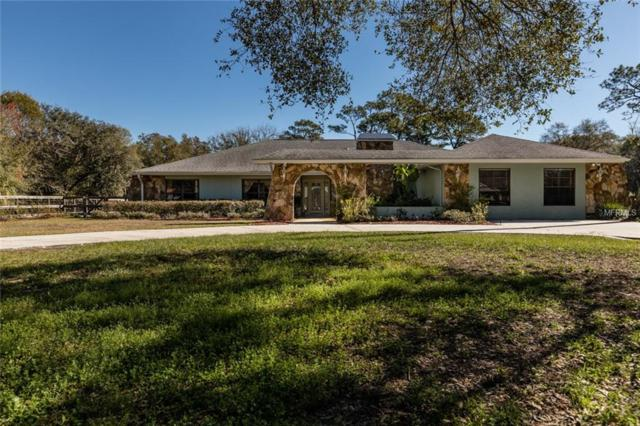 18523 30TH Street, Lutz, FL 33559 (MLS #U8031432) :: Griffin Group