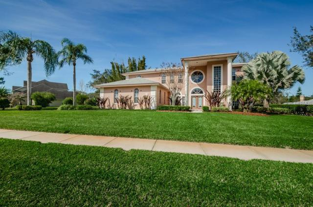 2875 Post Rock Drive, Tarpon Springs, FL 34688 (MLS #U8032474) :: Mark and Joni Coulter | Better Homes and Gardens