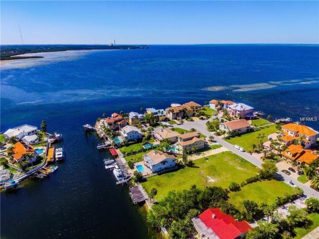 0 West Shore Drive, New Port Richey, FL 34652 (MLS #U8032537) :: The Duncan Duo Team