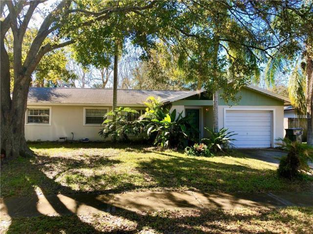 5016 Landsman Avenue, Tampa, FL 33625 (MLS #U8032598) :: Team Bohannon Keller Williams, Tampa Properties