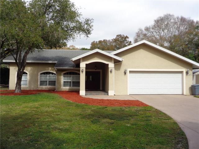 12983 Hibiscus Avenue, Seminole, FL 33776 (MLS #U8032636) :: Griffin Group
