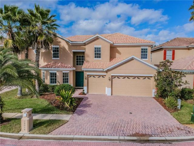 18016 Lanai Isle Drive, Tampa, FL 33647 (MLS #U8032738) :: Team Bohannon Keller Williams, Tampa Properties