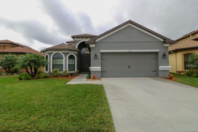1013 Ketzal Drive, Trinity, FL 34655 (MLS #U8032810) :: Team Virgadamo