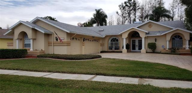 1378 Davenport Drive, Trinity, FL 34655 (MLS #U8032823) :: Delgado Home Team at Keller Williams