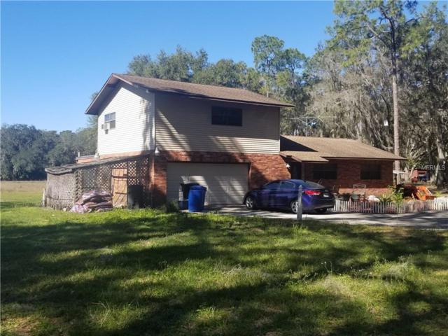 1811 Martin Road, Dover, FL 33527 (MLS #U8032834) :: Mark and Joni Coulter | Better Homes and Gardens