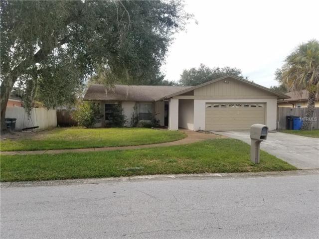 14106 Farmington Boulevard, Tampa, FL 33625 (MLS #U8032981) :: Team Bohannon Keller Williams, Tampa Properties