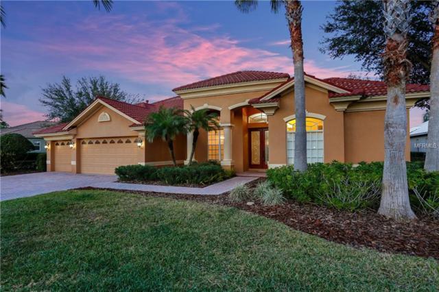 10805 Barbados Isle Drive, Tampa, FL 33647 (MLS #U8033184) :: Team Bohannon Keller Williams, Tampa Properties