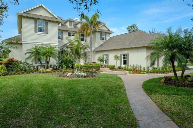 982 Skye Lane, Palm Harbor, FL 34683 (MLS #U8033345) :: The Light Team