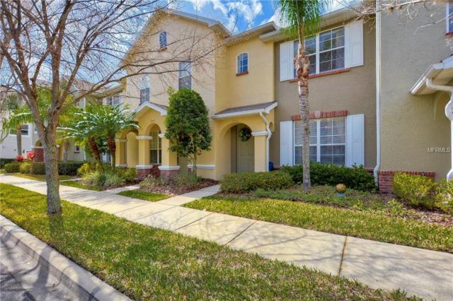 14116 Oakham Street, Tampa, FL 33626 (MLS #U8033872) :: Cartwright Realty