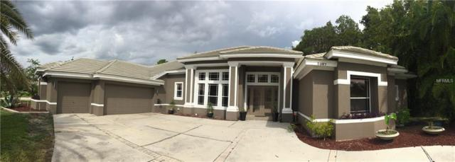 Address Not Published, Tarpon Springs, FL 34688 (MLS #U8033996) :: The Duncan Duo Team