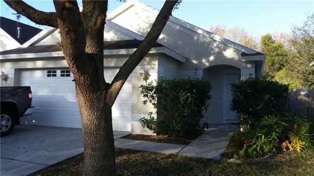 8435 Hawbuck Street, Trinity, FL 34655 (MLS #U8034199) :: Team Virgadamo
