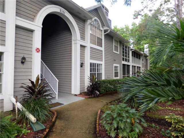 2101 Fox Chase Boulevard #103, Palm Harbor, FL 34683 (MLS #U8034205) :: Lovitch Realty Group, LLC