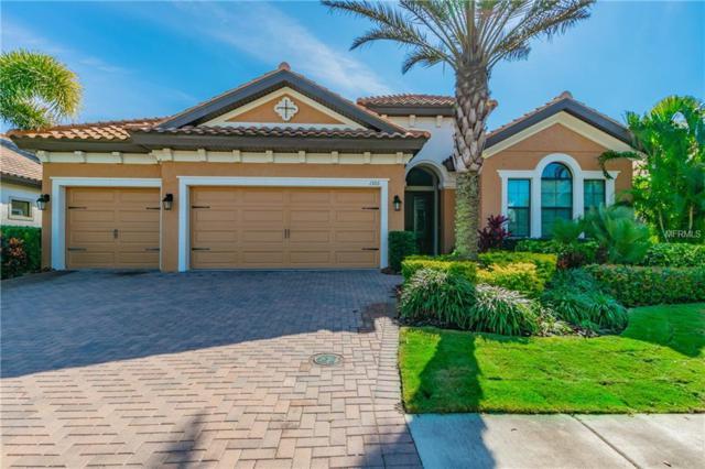 1366 Via Verdi Drive, Palm Harbor, FL 34683 (MLS #U8034254) :: SANDROC Group