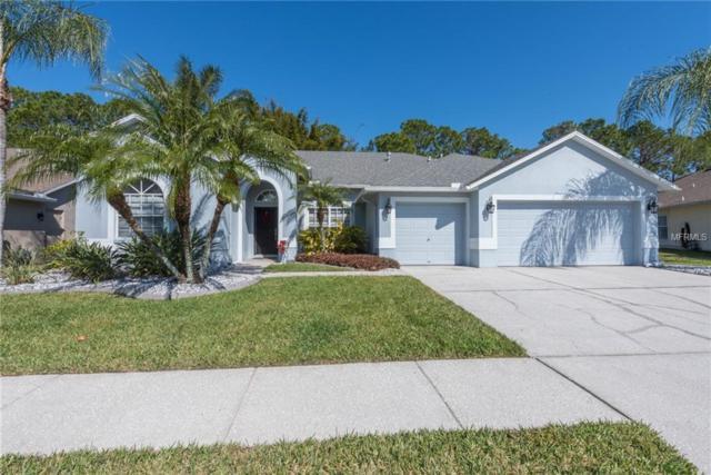 14711 Coral Berry Drive, Tampa, FL 33626 (MLS #U8034377) :: Cartwright Realty