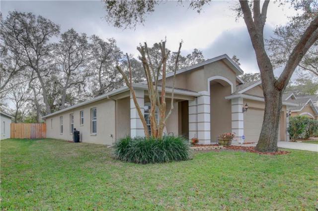 11151 Indian Oaks Drive, Tampa, FL 33625 (MLS #U8034417) :: Cartwright Realty