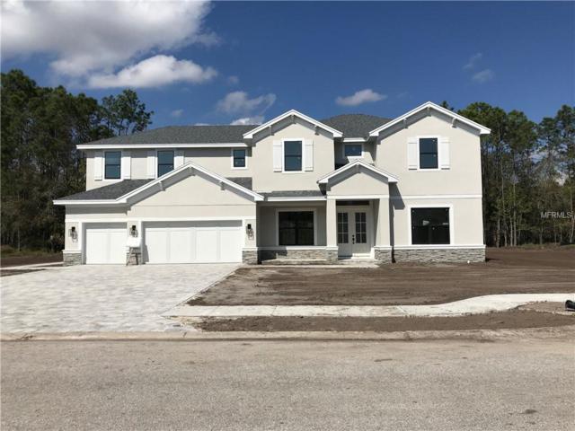 12903 Eagles Entry Drive, Odessa, FL 33556 (MLS #U8034486) :: RE/MAX CHAMPIONS