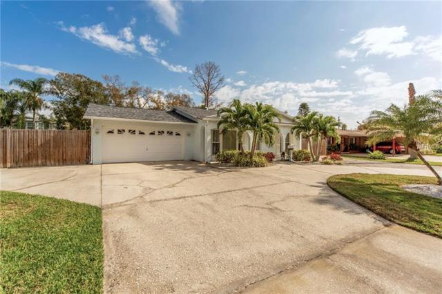 4143 Overlook Drive NE, St Petersburg, FL 33703 (MLS #U8034493) :: The Light Team