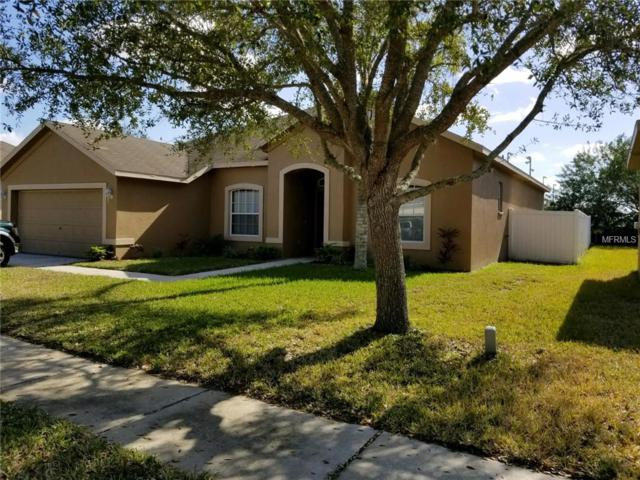 11911 Summer Springs Drive, Riverview, FL 33579 (MLS #U8034625) :: Team Bohannon Keller Williams, Tampa Properties