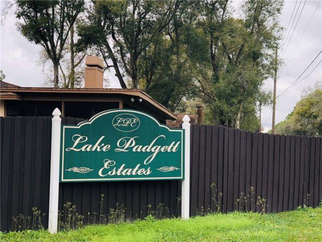 3459 E Lake Drive, Land O Lakes, FL 34639 (MLS #U8034760) :: Griffin Group