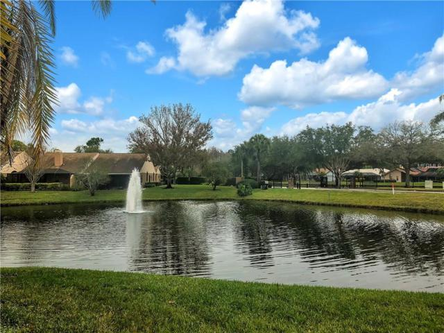 3899 Darston St, Palm Harbor, FL 34685 (MLS #U8034788) :: Mark and Joni Coulter | Better Homes and Gardens
