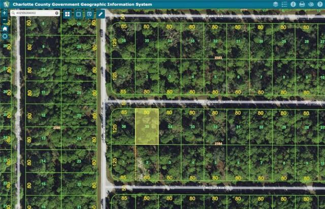 13069 Harbison Avenue, Port Charlotte, FL 33953 (MLS #U8034797) :: Zarghami Group