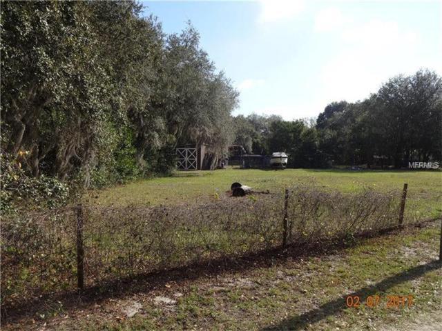 Boy Scout Road, Odessa, FL 33556 (MLS #U8034804) :: Lock & Key Realty