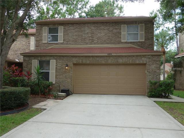 4058 Daventry Lane, Palm Harbor, FL 34685 (MLS #U8034823) :: Team Pepka