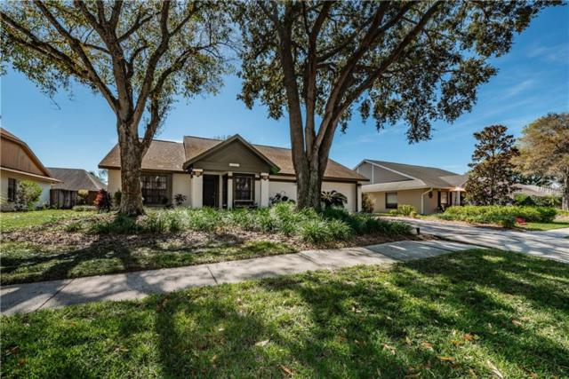 15011 Redcliff Drive, Tampa, FL 33625 (MLS #U8034874) :: Cartwright Realty
