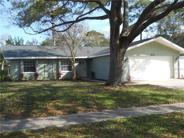 2818 Fair Green Drive, Clearwater, FL 33761 (MLS #U8034876) :: Florida Real Estate Sellers at Keller Williams Realty