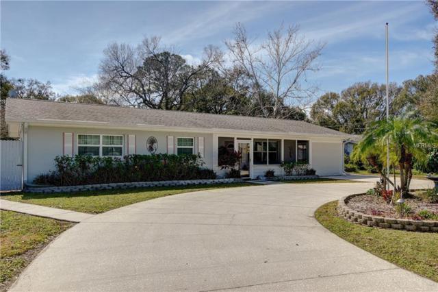 4704 W Ballast Point Boulevard, Tampa, FL 33611 (MLS #U8034908) :: Cartwright Realty