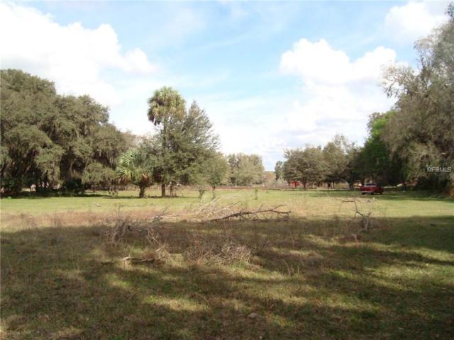 13138 Cr 755, Webster, FL 33597 (MLS #U8034930) :: Sarasota Gulf Coast Realtors