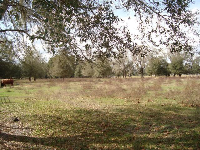 015 County Road 755, Webster, FL 33597 (MLS #U8034934) :: Cartwright Realty