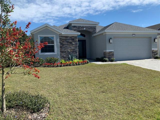 8328 Bridgeport Bay Circle, Mount Dora, FL 32757 (MLS #U8035010) :: Griffin Group