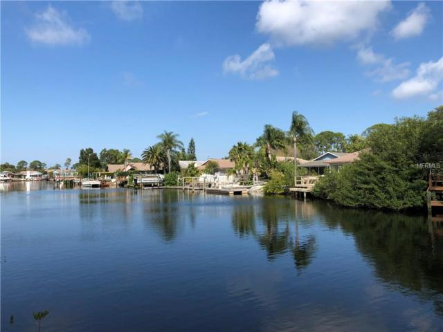 4555 Marine Pkwy #205, New Port Richey, FL 34652 (MLS #U8035098) :: Team Bohannon Keller Williams, Tampa Properties