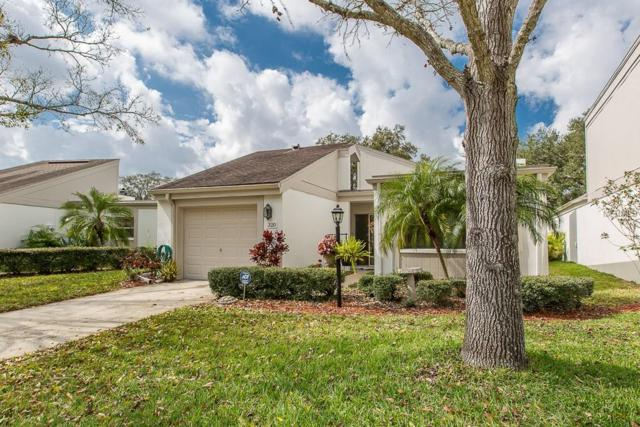 320 S Woodlands Drive, Oldsmar, FL 34677 (MLS #U8035139) :: SANDROC Group