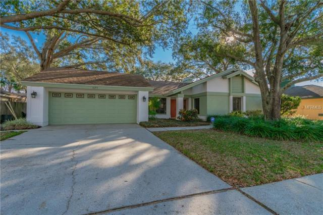 1695 El Tair Trail, Clearwater, FL 33765 (MLS #U8035198) :: SANDROC Group