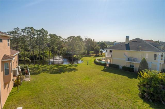 2068 N Pointe Alexis Drive, Tarpon Springs, FL 34689 (MLS #U8035224) :: The Light Team