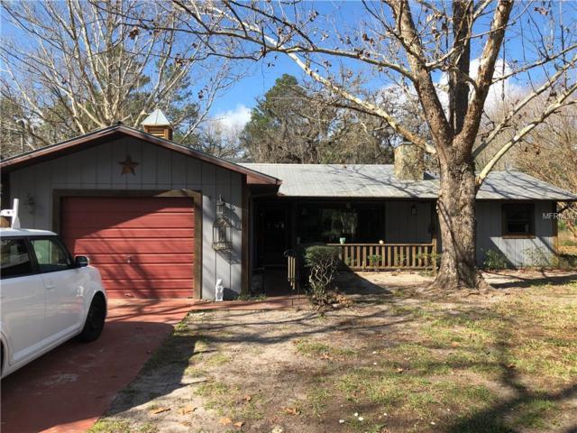18705 Coats Street, Spring Hill, FL 34610 (MLS #U8035391) :: SANDROC Group