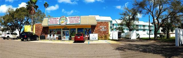 240 Causeway Boulevard, Dunedin, FL 34698 (MLS #U8035400) :: Baird Realty Group