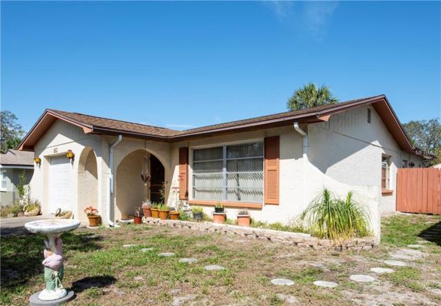 1413 Wisconsin Avenue, Palm Harbor, FL 34683 (MLS #U8035430) :: Delgado Home Team at Keller Williams